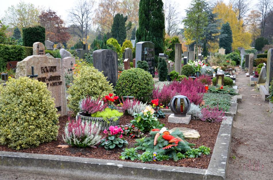 Можно ли на кладбище сажать цветы из своего сада 64