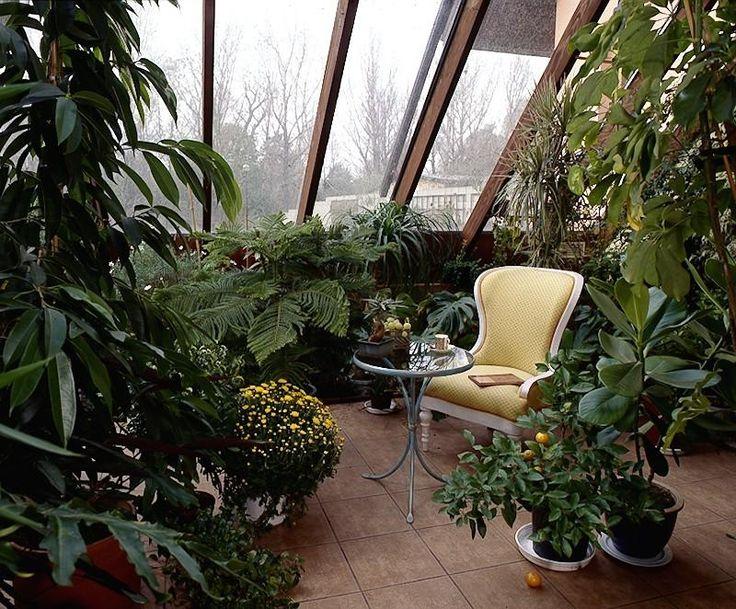 Идеи для зимнего сада фото