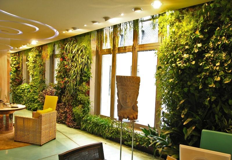 Что такое вертикальное озеленение в квартире