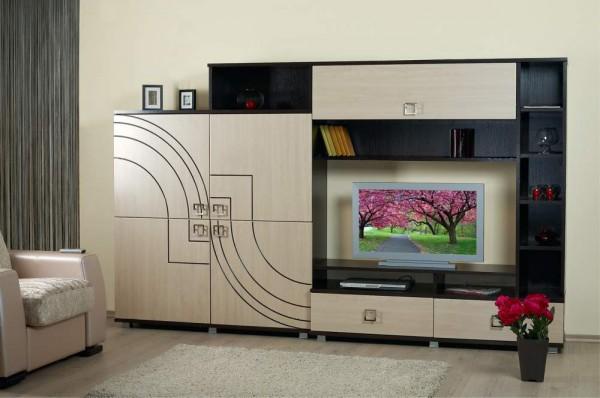 современные шкафы в зал фото
