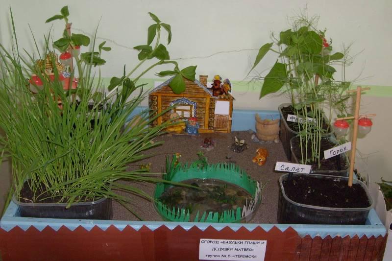 Обустройство огорода для детского сада своими руками