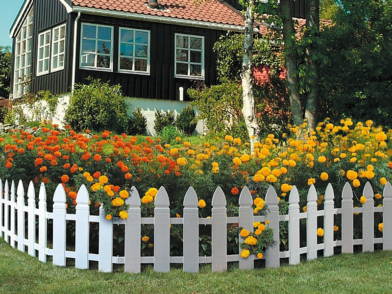 Цветник у дома с картинками